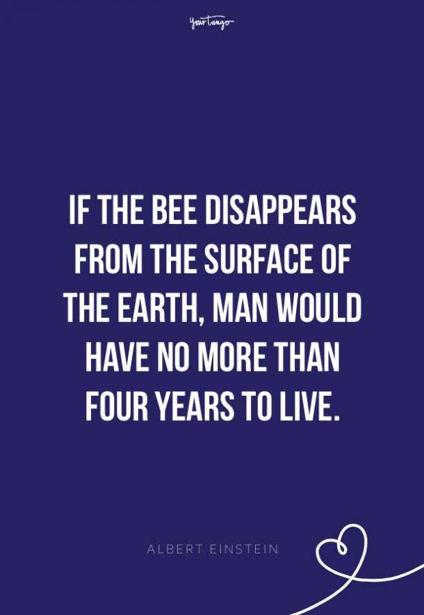 Albert Einstein environment quotes
