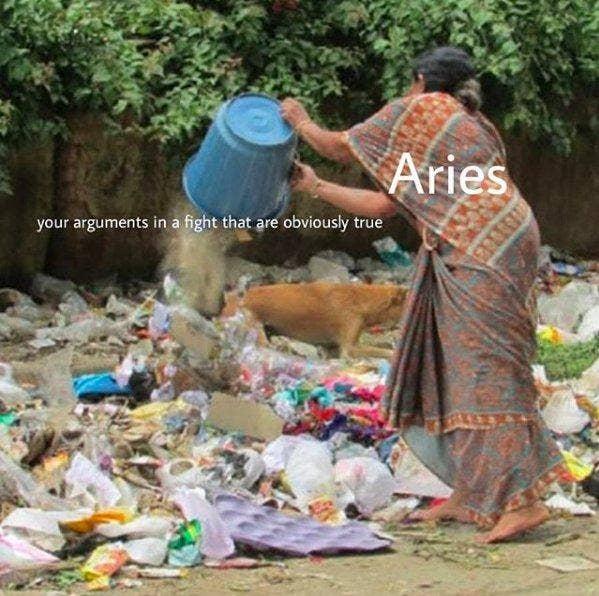 Best Aries Memes