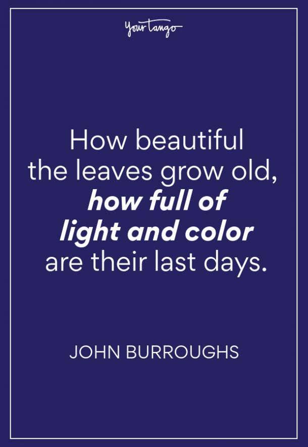 John Burroughs Fall Quote
