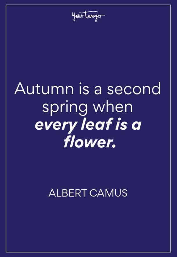 Albert Camus Fall Quote