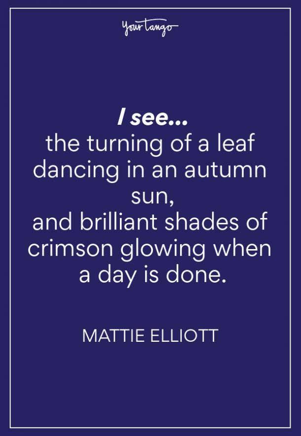 Mattie Elliott Fall Quotes