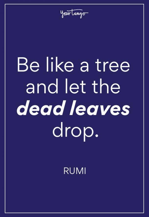 Rumi Fall Quote
