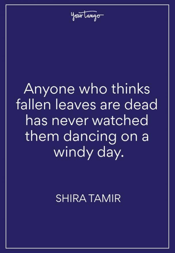 Shira Tamir Fall Quote