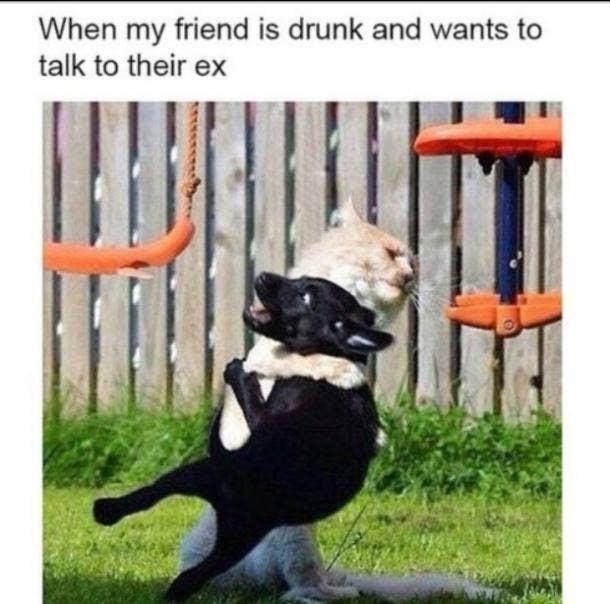 when my friend is friendship meme
