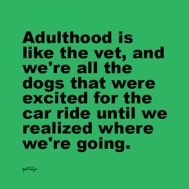 adulthood is like the vet adulting quotes