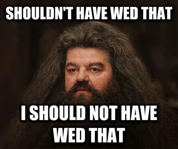 hagrid divorce meme