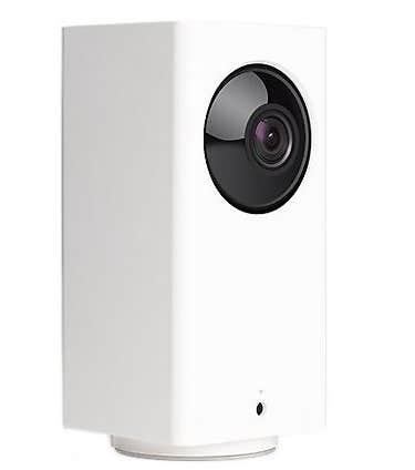 indoor pet camera