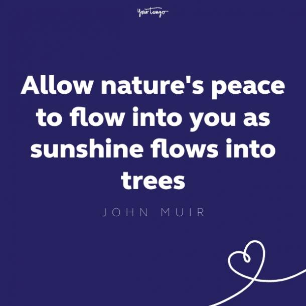 allow nature's peace to flow into you as sunshine flows through trees