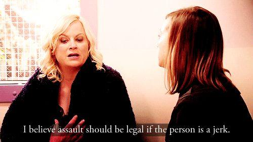 i believe assault should be legal if the person is a jerk leslie knope