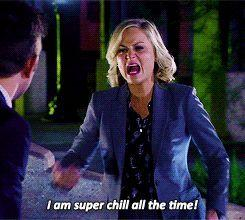 i am super chill all the time leslie knope