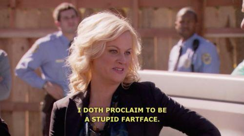 i doth proclaim to be a stupid fart face leslie knope