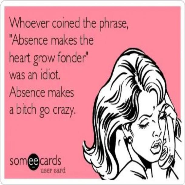 love meme absence makes the heart
