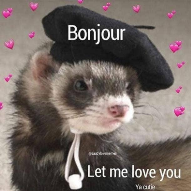 love meme bonjour