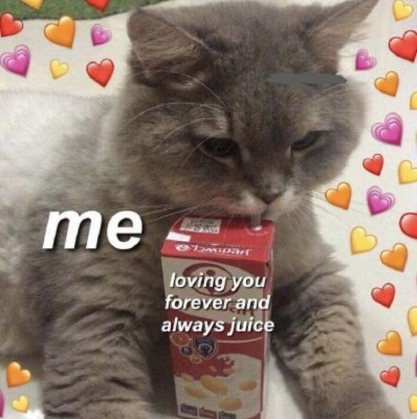 love meme always and forever juice