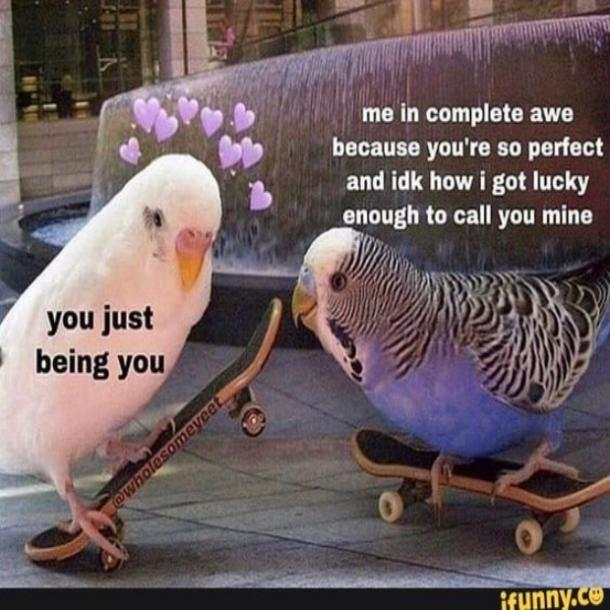 love meme you being you
