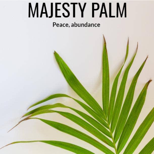 majesty palm symbolism
