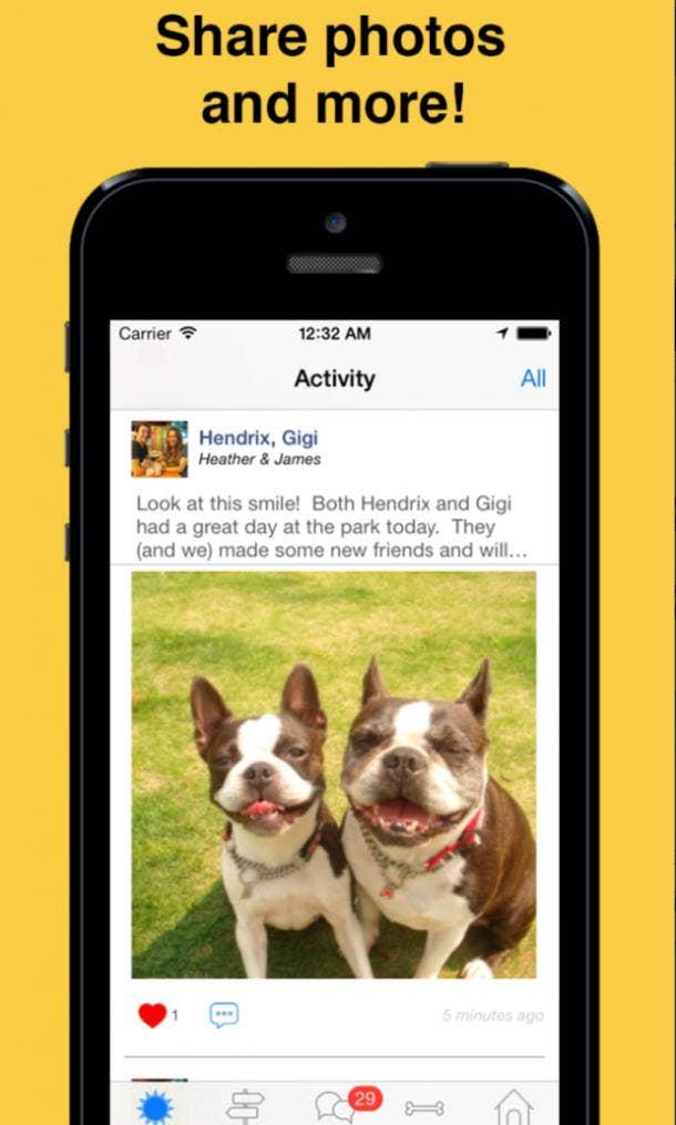 Meet My Dog app