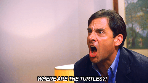 michael scott turtles quote