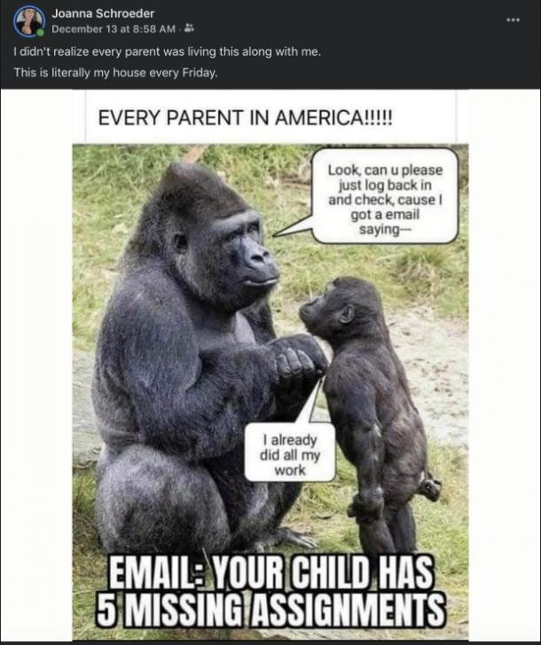 meme of chimpanzee mom and baby discussing 'missing assigments' emails