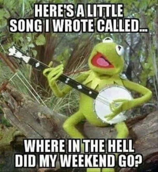 monday memes kermit the frog song