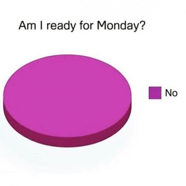 monday memes pie chart