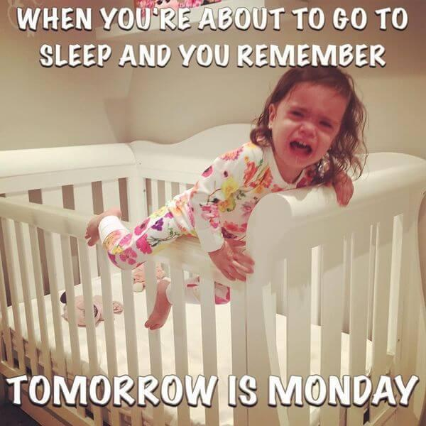 monday memes about to go to sleep