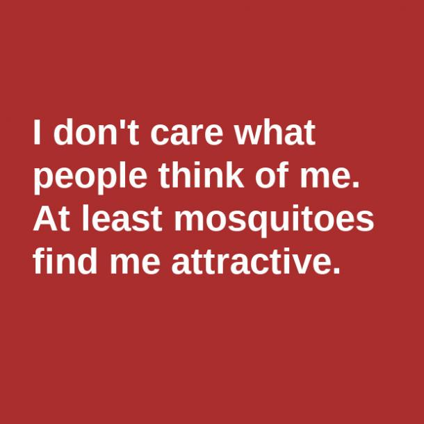 mosquitos birthday meme