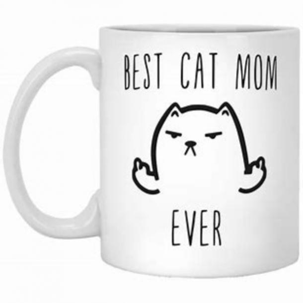 Best Cat Mom Ever' Mug mother's day gift for girlfriend