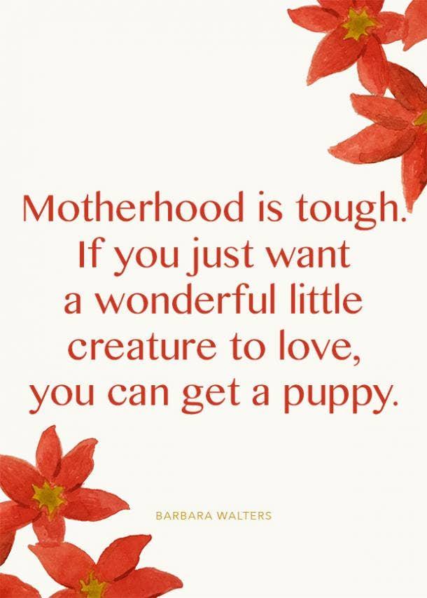 babara walters motherhood quote
