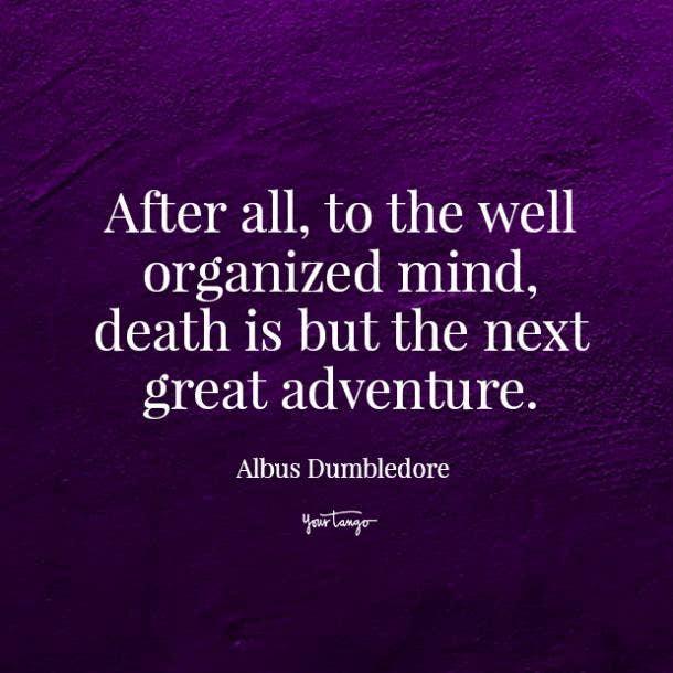 Albus Dumbledore losing both parents quotes
