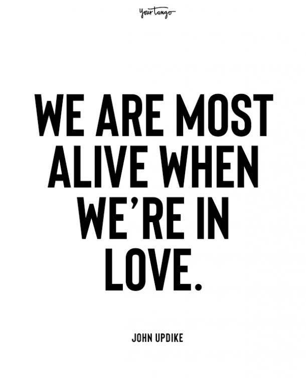 john updike beginning love quotes