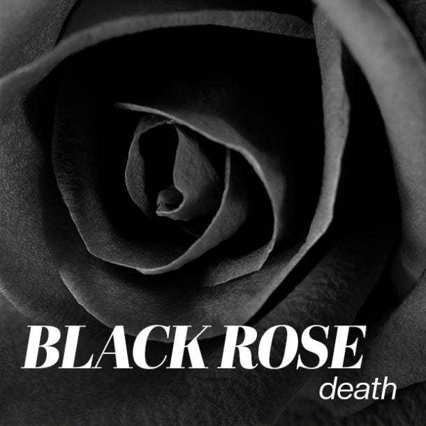 black rose color meaning