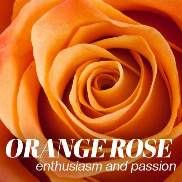 orange rose color meaning