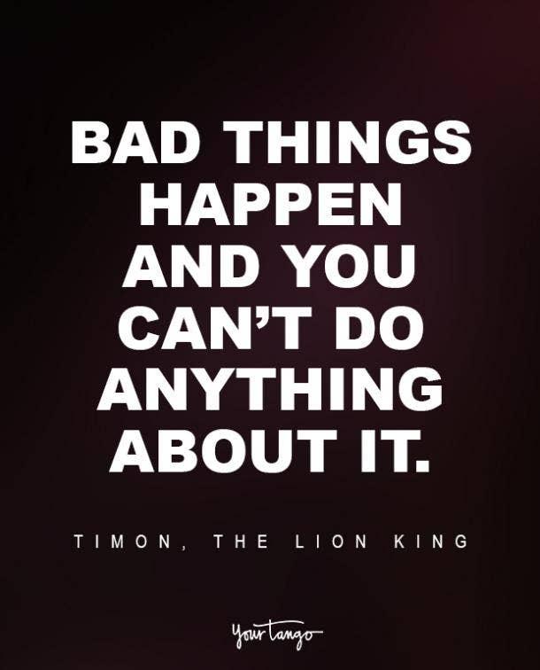 Timon, The Lion King Sad Disney Quote