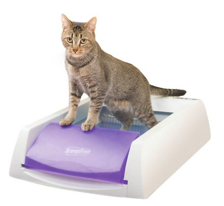 scoop free self cleaning cat litter box