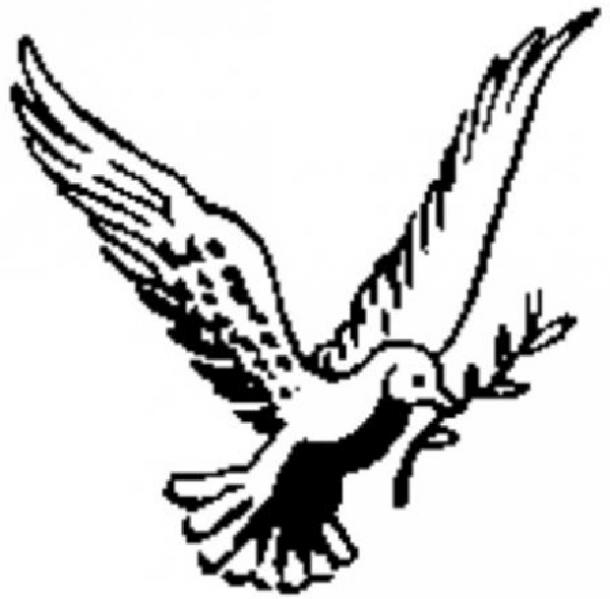 love birds and doves symbol of love