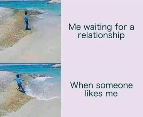 Best Virgo Memes
