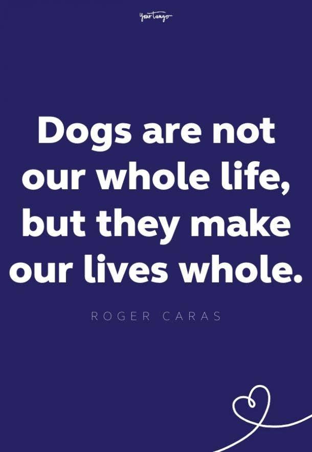 roger caras words of comfort