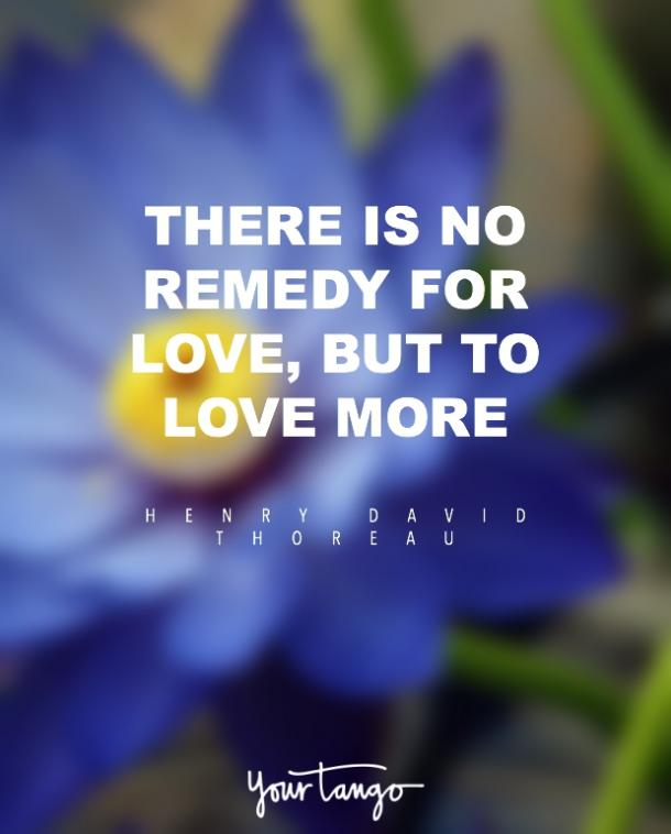 Henry David Thoreau i love you quote