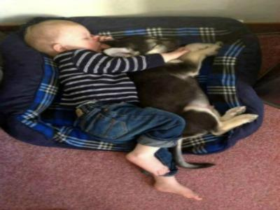 baby sleeping with puppy
