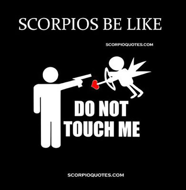 Scorpio Love Quotes Magnificent 48 Quotes That Prove Scorpios Are The Sassiest Of The Zodiac YourTango