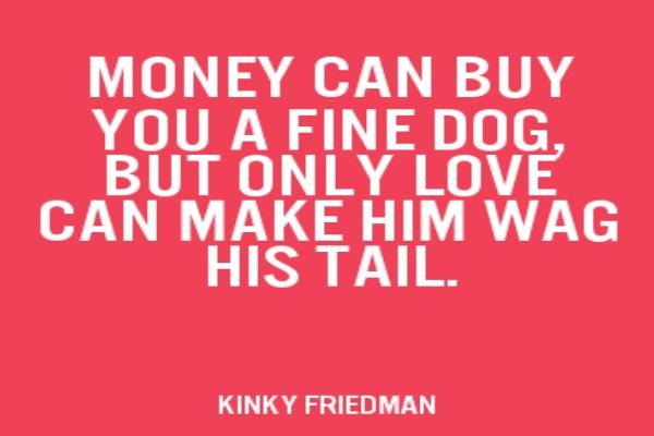 Kinky Friendman Love Quote