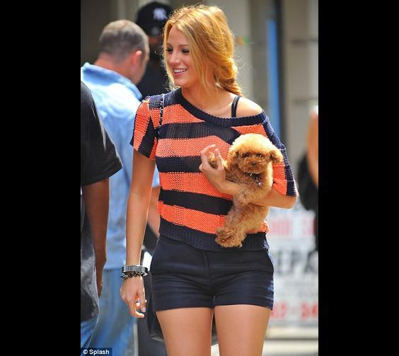 Blake Lively & Her Dog, Penny