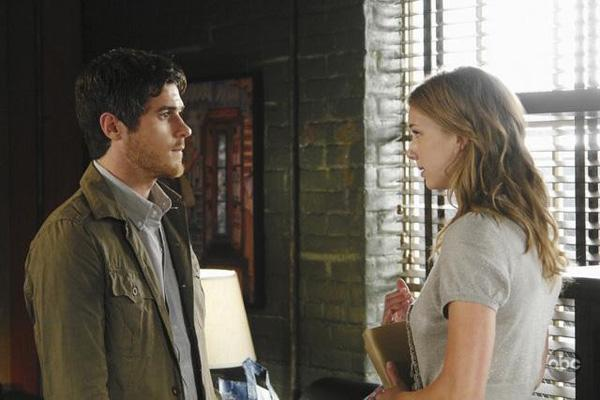 David Annable and Emily VanCamp Brothers and Sisters