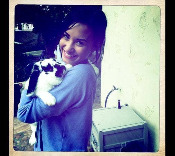 Demi Lovato & Her Bunny, Ella