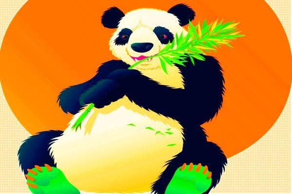 Giant pandas watch porn.