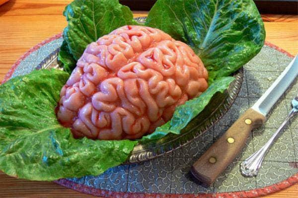 Gelatin Brains