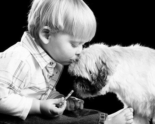 "<a href=""http://designbeep.com/2011/07/29/heart-touching-photos-of-dogs-with-humans/"" target=""_blank"">designbeep.com</a>"