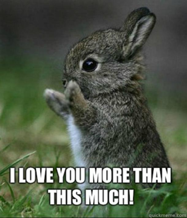 12_45?itok=ZTXCGzy5 40 cute 'i love you' memes we are obsessed with yourtango