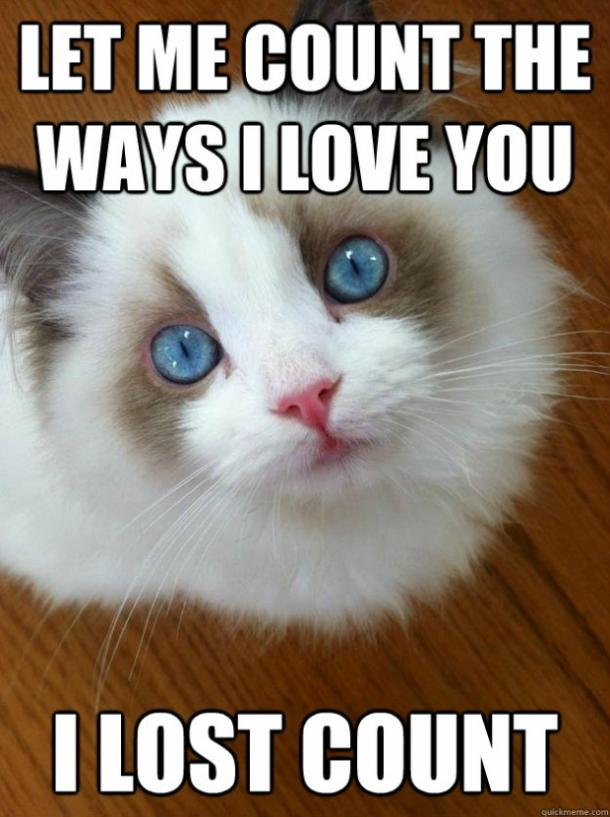 40 Cute I Love You Memes And Funny Quotes Yourtango